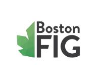 Boston FIG Logo